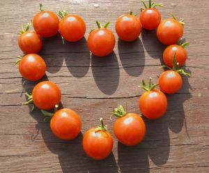 1197555_sign_of_love_-_heart_made_from_small_tomatoes